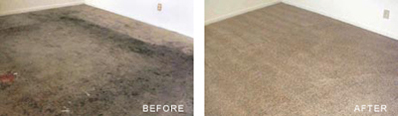 Durham Carpet Cleaning Bedroom Before After